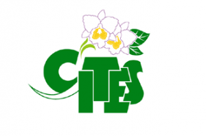 CITES has outlived its usefulness and credibility