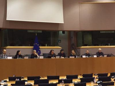 EU Panel