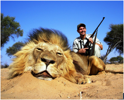 How all members of the hunting industry can conserve lions