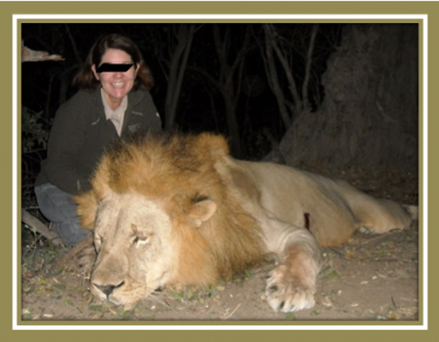 How easy it is to hunt a lion