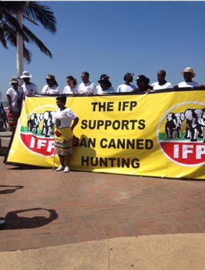 IFP banner